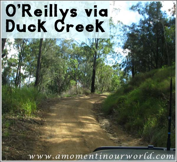 OReillys via Duck Creek Road
