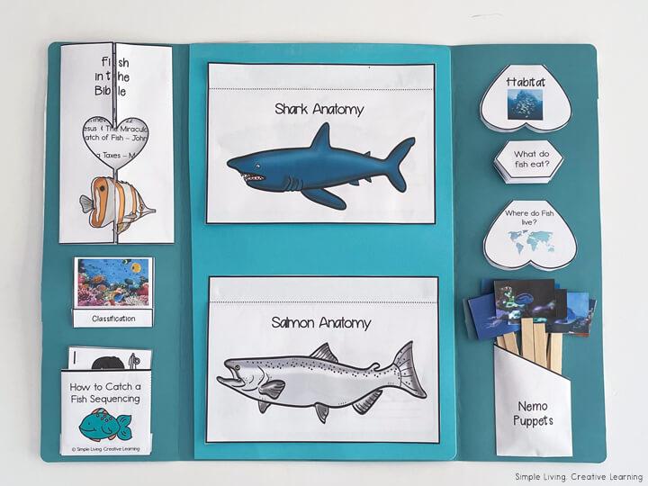 Fish Lapbook