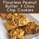 With only 5 ingredients, these flourless peanut butter chocolate chip cookies are quick and easy to make and taste delicious!