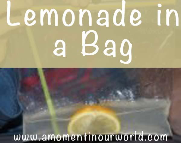 Lemonade in a Bag