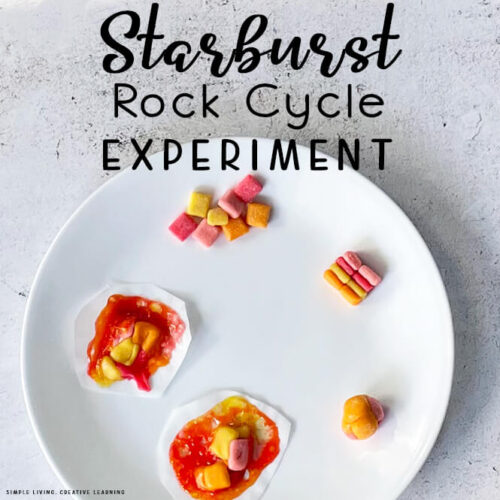 Starburst Rock Cycle Experiment
