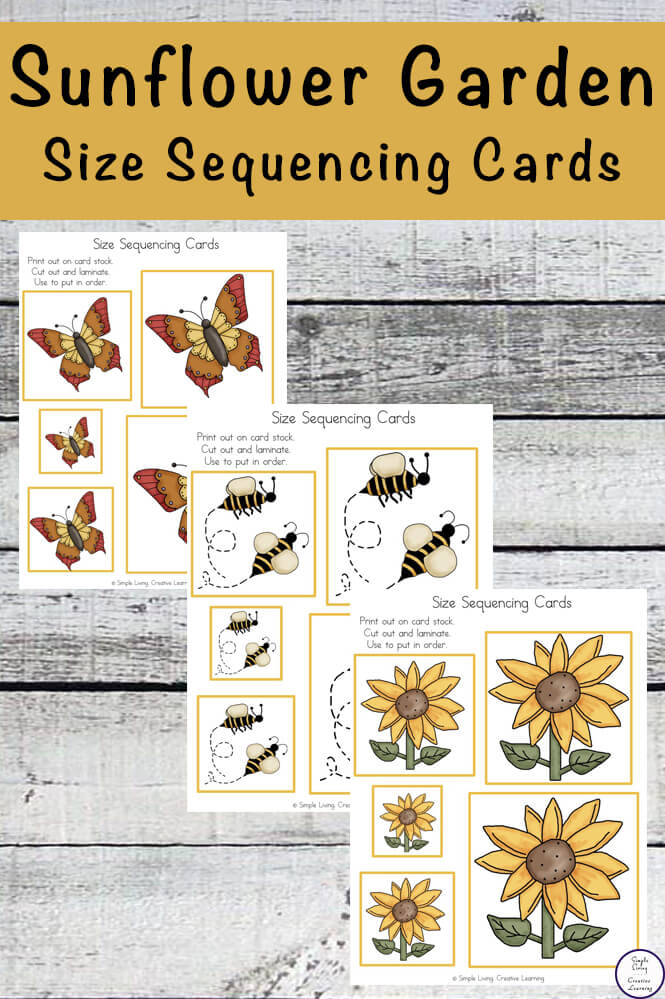 These free Sunflower Sequencing Cards go well with any Sunflower Unit.