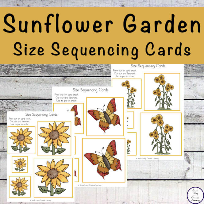 Sunflower Sequencing Cards