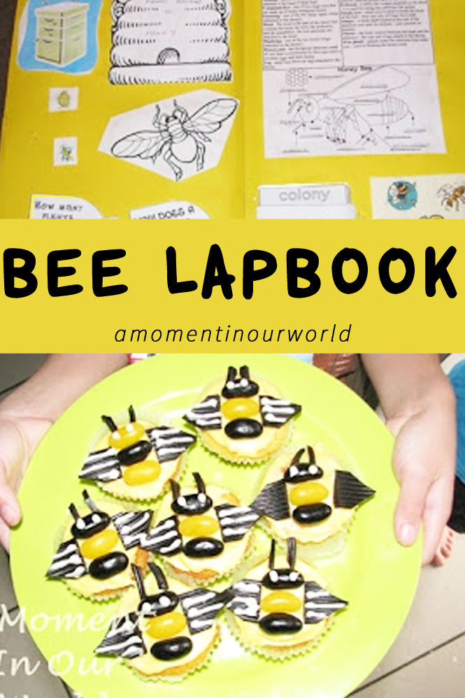 This Bee Unit is a great way for kids to learn about Honey Bees.
