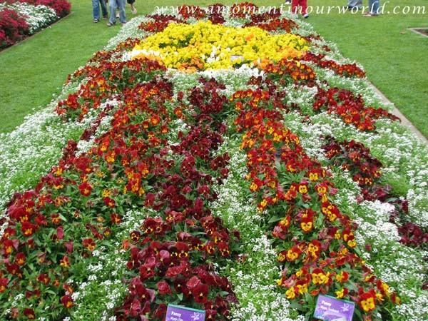 Carnival of Flowers 7