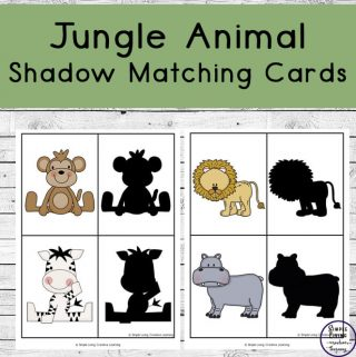 This cute little pack includes cards of jungle animals that can be matched with their shadows. They can also be used as memory cards.