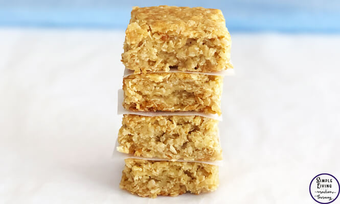 This yummy honey oat slice is easy to make and is a delicious snack for afternoon or morning tea with a nice hot cuppa and a chat with friends.