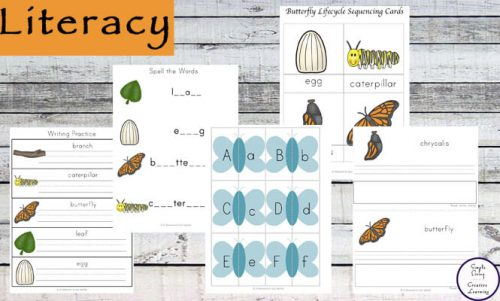 This huge 184 page Butterfly Printable Pack is aimed at kids in preschool and kindergarten. Kids will love learning about the life cycle of a butterfly.