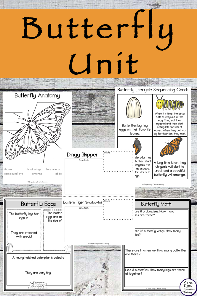 Learning about the Butterfly Life Cycle with this Butterfly Unit has been so much fun.