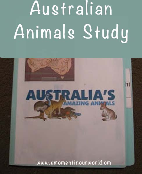 Australian Animals Lapbook