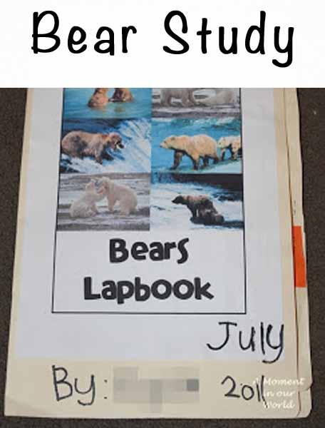 Bears Lapbook