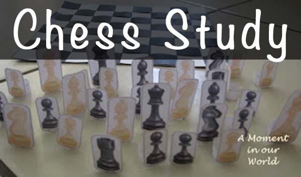 Chess Study a