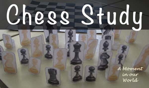 Chess Lapbook