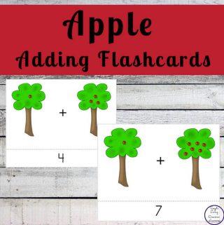 Apple Adding Flashcards