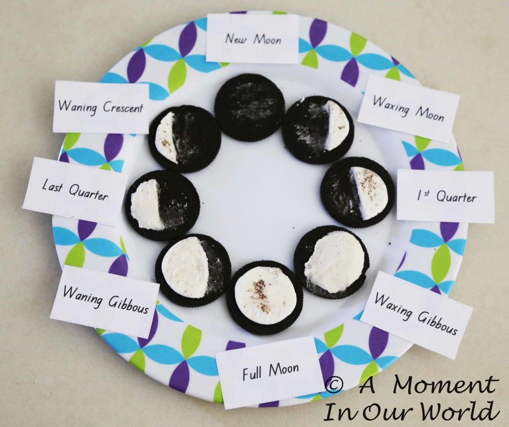 phases of the moon1