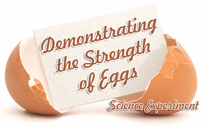Easter Science Experiment: Demonstrating the Strength of Eggs