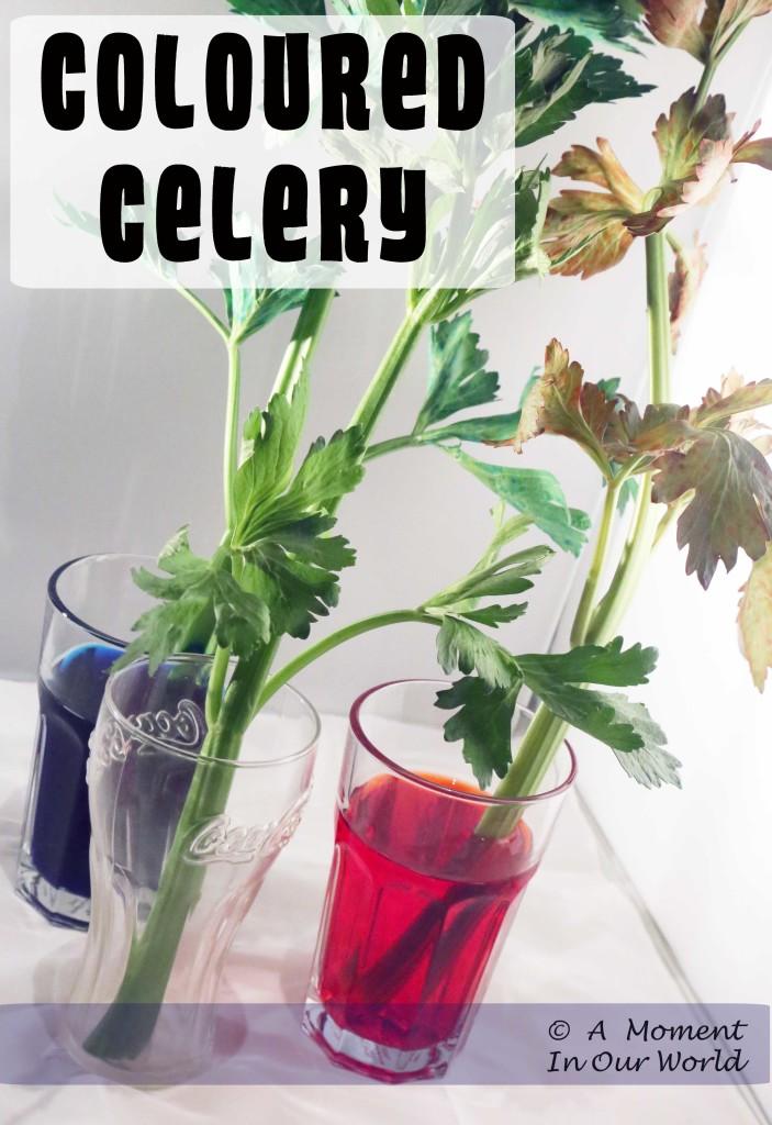 Colourful Celery