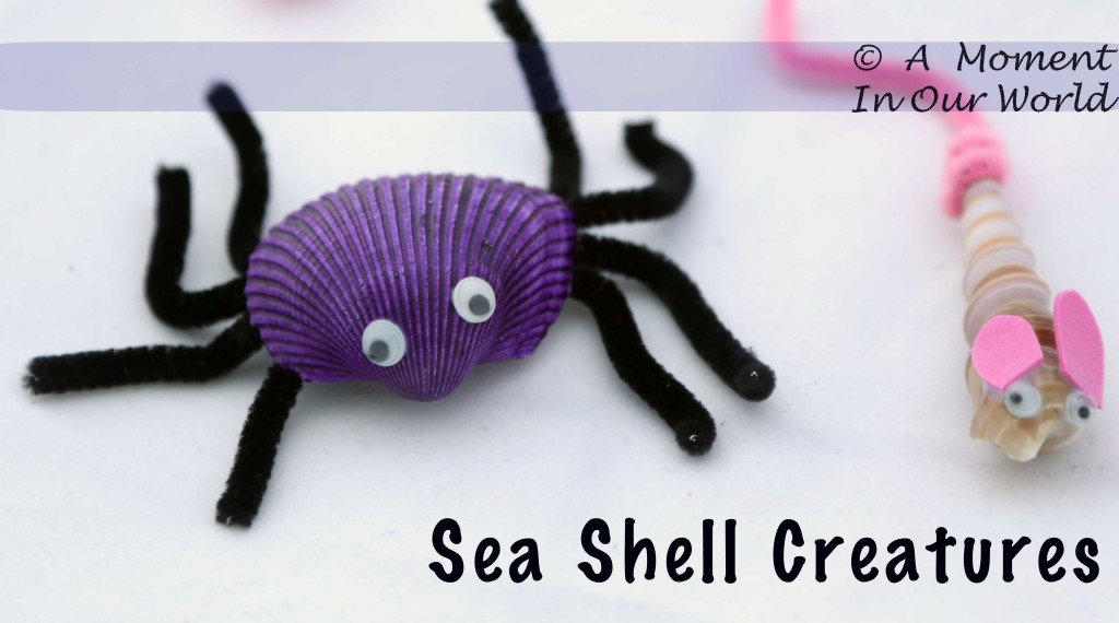 Shell Creatures