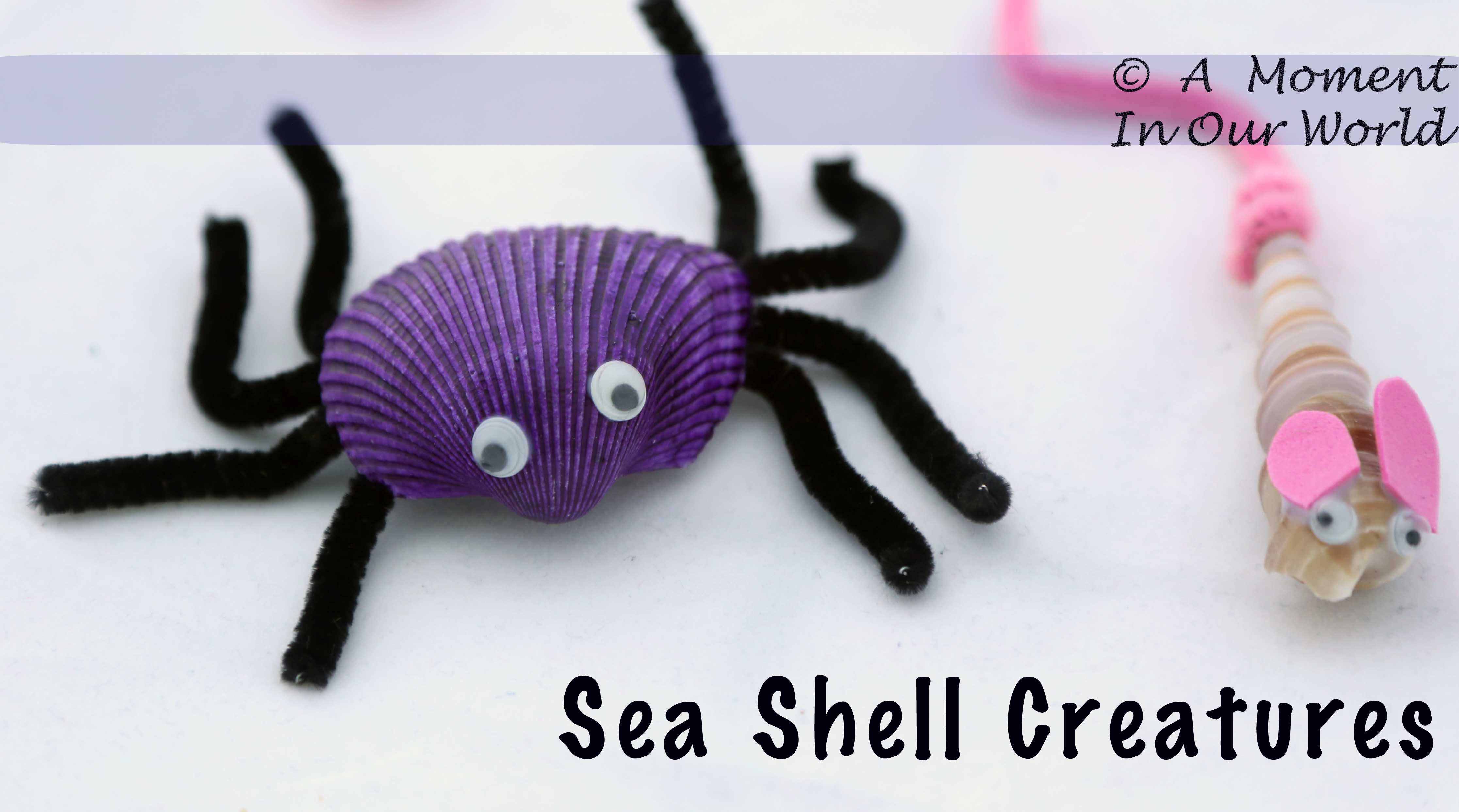 Sea Shell Creatures