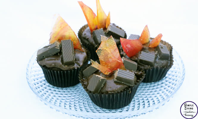 These campfire cupcakes are so fun to make!! A wonderful addition to a camping unit or great to take on a camping trip with you.