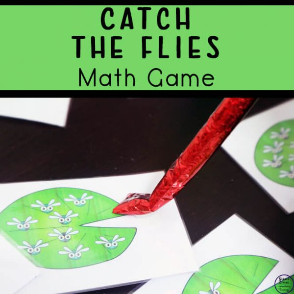 Catch the Flies Game