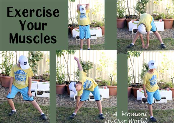 Exercise your Muscles