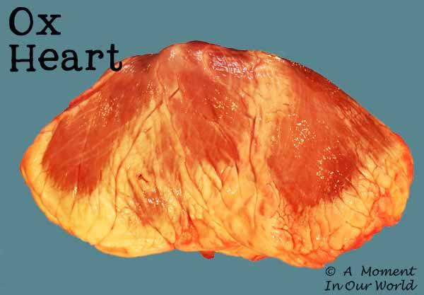 Ox Heart 1