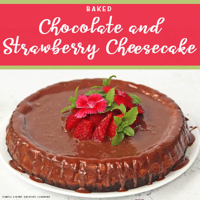 Baked Chocolate and Strawberry Cheesecake