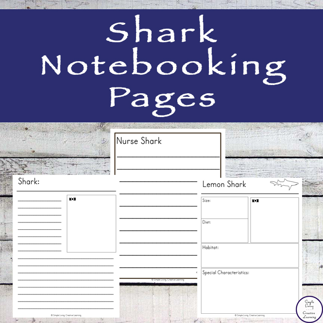 These shark note booking pages area available for ten of the most popular sharks.