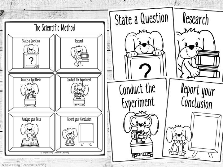 Scientific Method Flip Book and Worksheets