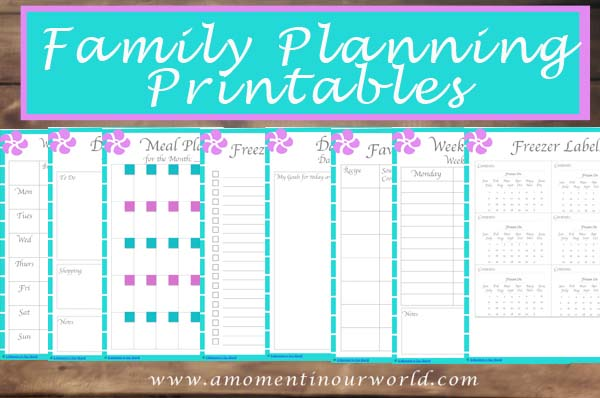 Family Planning Printables