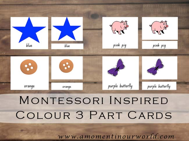 Montessori-Inspired Colour 3 Part Cards