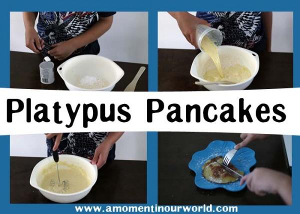 Platypus Pancakes