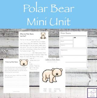 This Mini Polar Bear Unit will help your child learn more about these massive, playful creatures.