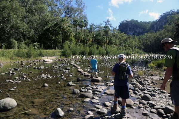 Carnarvon Gorge Main Walking Track 3