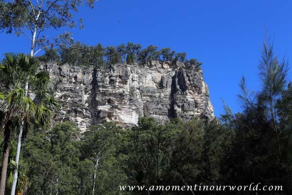 Carnarvon Gorge Main Walking Track 4