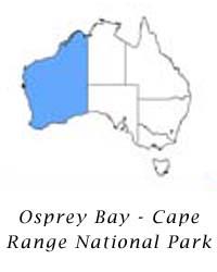 Opsrey Bay