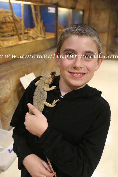 AS Reptile Centre 44