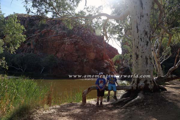 Ellery Creek Big Hole 3
