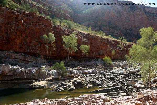 Orminston Waterhole and Gorge9