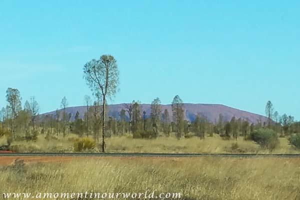 Uluru Free Camp 1