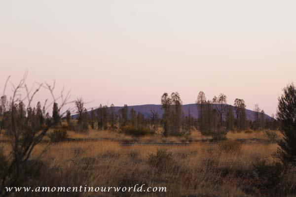 Uluru Free Camp 2