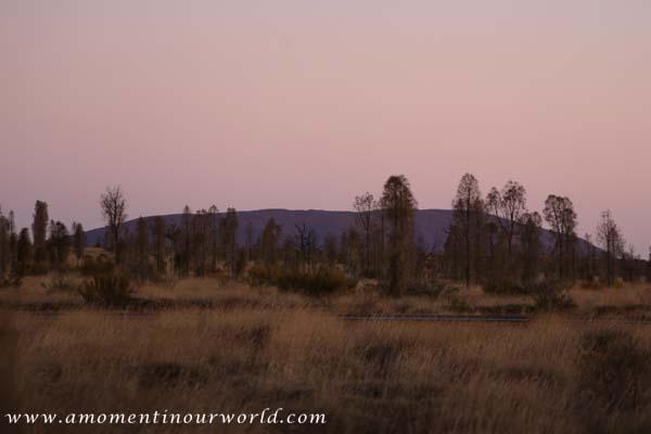Uluru Free Camp 4