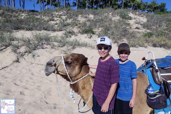Camel Ride 16