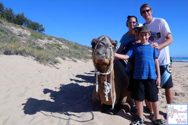 Camel Ride 18