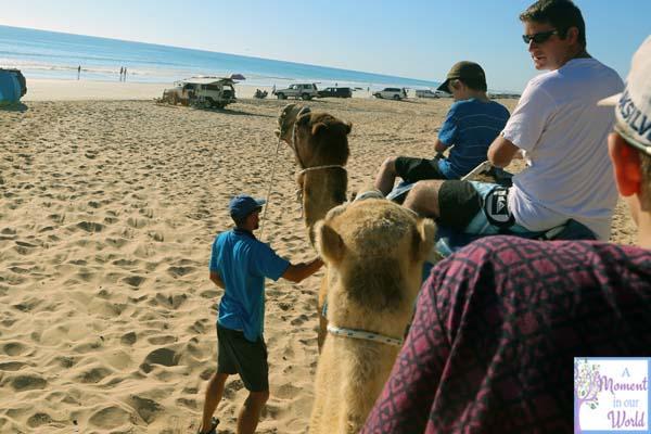 Camel Ride 29