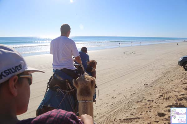 Camel Ride 32