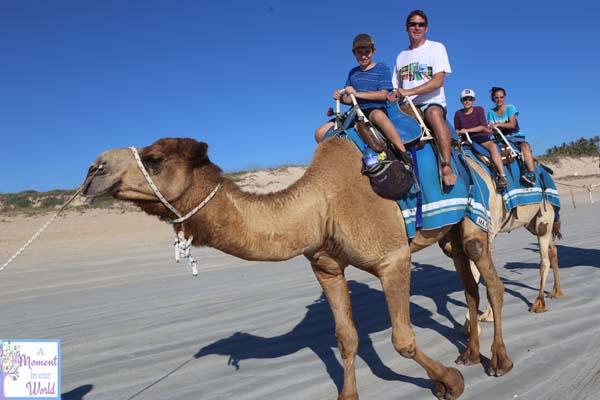 Camel Ride 34