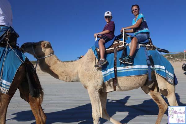 Camel Ride 38