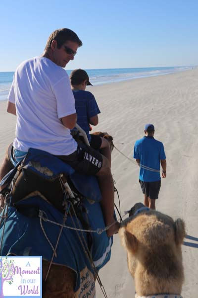 Camel Ride 39